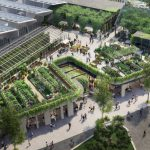 Could rooftop gardens save our cities from climate change? 11477296 3x2 700x467 1 150x150