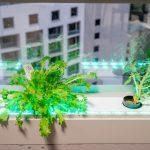 Greendow Vertical Window Garden gd 012 150x150