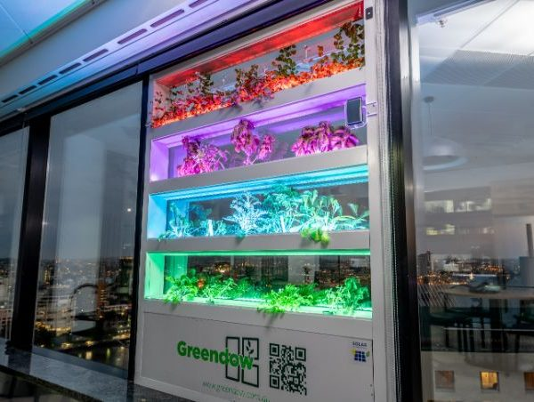 Greendow Lights on  Greendow Vertical Window Garden gd 031 1 600x452